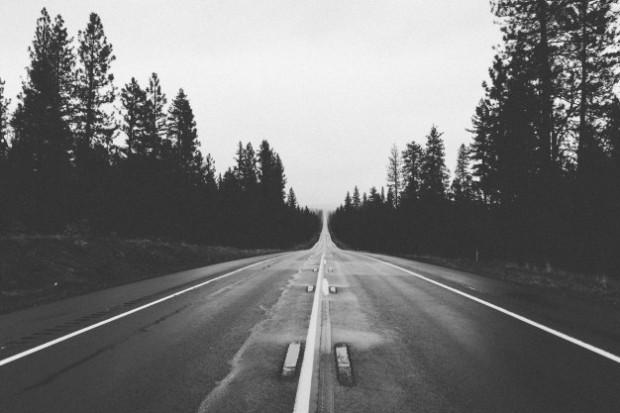 camino-blanco-y-negro-de-bosques_442-19321742