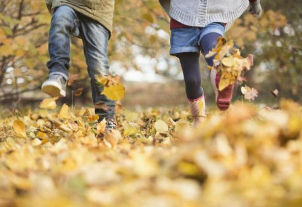 220562-654x450-Children-walking-in-autumn-leaves